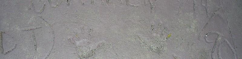 Foto von: Neelix von en.wikipedia